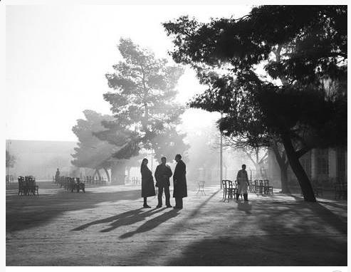 Πρωινό στην κεντρική πλατεία 1950