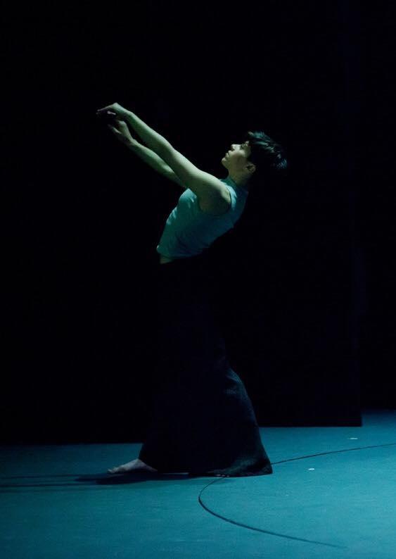 15219450 1810457085888585 720532551491616595 n - Παραστάσεις & Σεμινάρια Χορού από τις ομάδες BelleVille & Α43