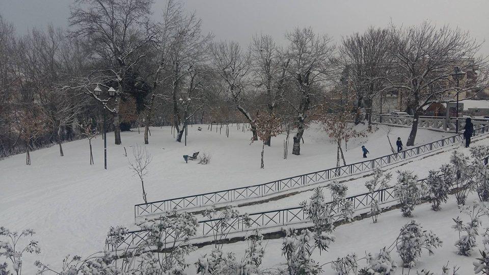 15942516 1182800951840479 736619422 n - LIVE NOW: Χιονίζει στη Λάρισα | Αλκαζάρ