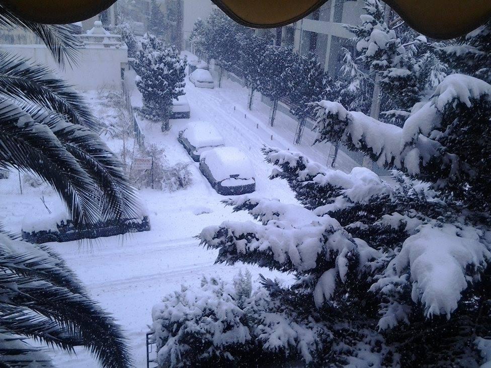 15966927 132151210620785 554625442 o - ΜΑΓΙΚΕΣ ΕΙΚΟΝΕΣ ΣΤΗ ΛΑΡΙΣΑ: Το χιόνι άγγιξε τα 30 εκατοστά!