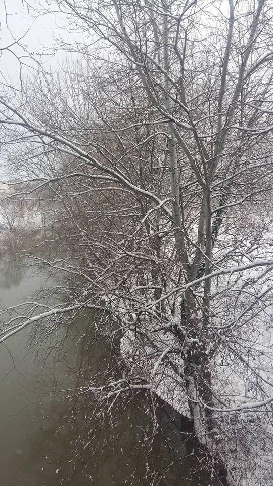 15978520 1182801038507137 1285781301 n - LIVE NOW: Χιονίζει στη Λάρισα | Αλκαζάρ
