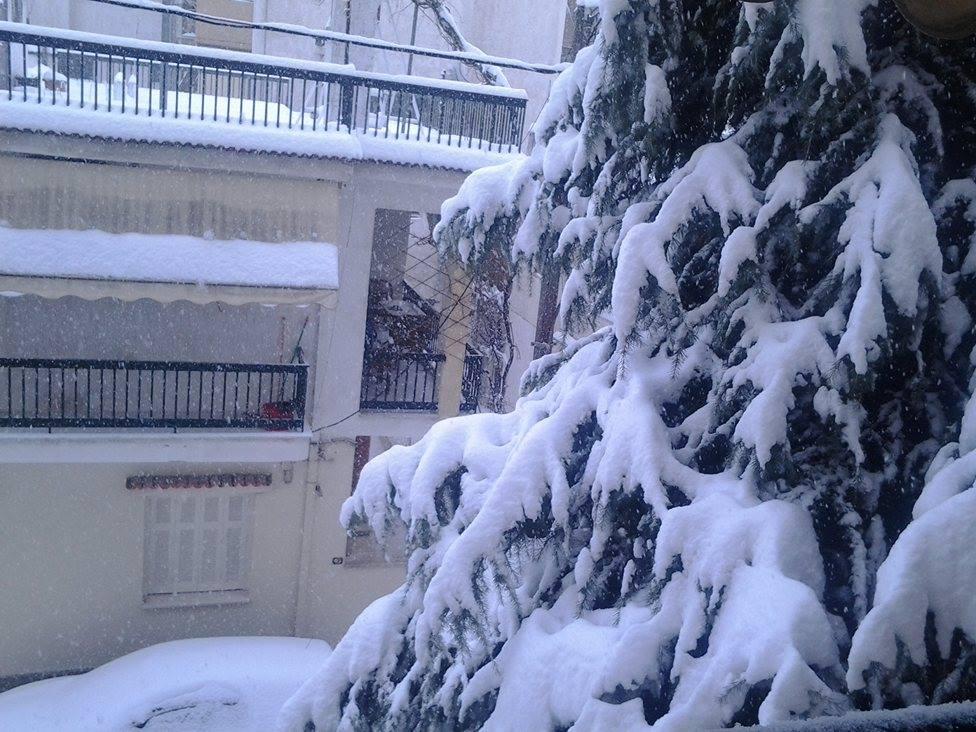 16009991 132152207287352 1446879842 o - ΜΑΓΙΚΕΣ ΕΙΚΟΝΕΣ ΣΤΗ ΛΑΡΙΣΑ: Το χιόνι άγγιξε τα 30 εκατοστά!
