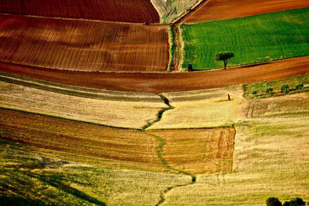 991176 rsz 1η Εκθεση 28 2 1024x682 - Τα χρώματα του Θεσσαλικού κάμπου μέσα από 17 φωτογραφίες