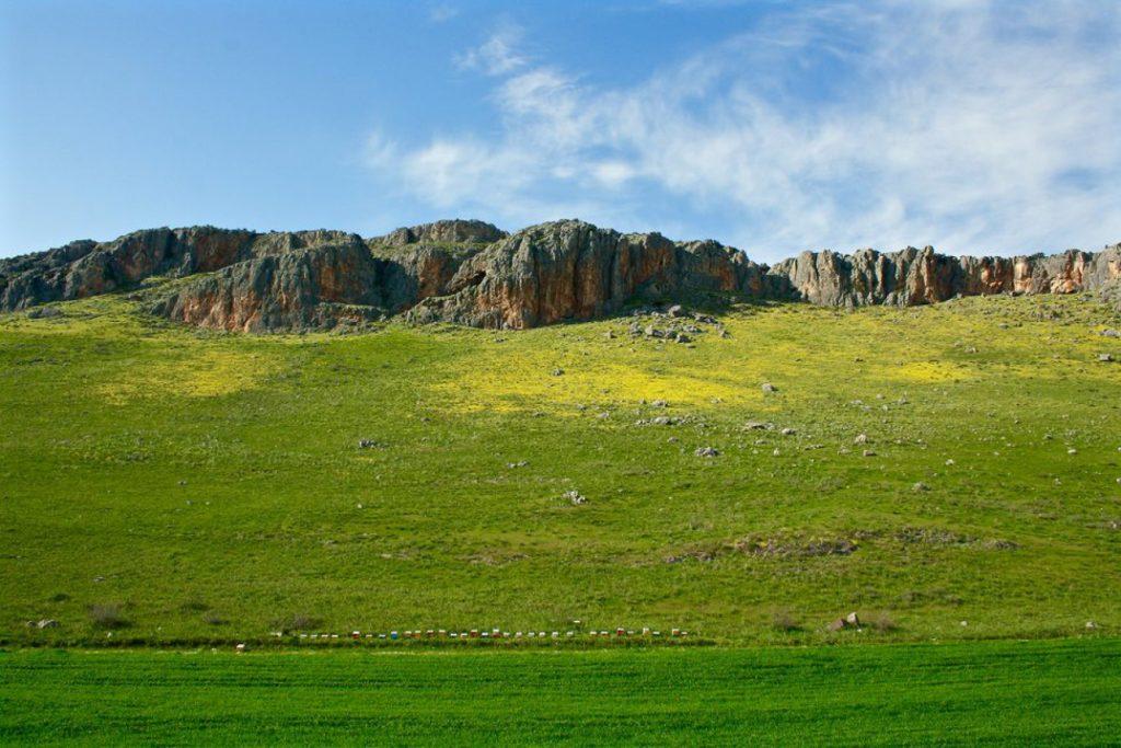 991190 rsz img 9982 1024x683 - Τα χρώματα του Θεσσαλικού κάμπου μέσα από 17 φωτογραφίες