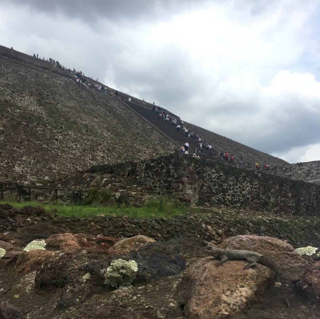 dimitris gkisakis mexico larisaevents 6 1024x1021 - Λάρισα - Μεξικό: Ένα ταξίδι γεμάτο εμπειρίες για το Λαρισαίο επιχειρηματία!