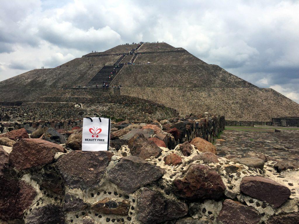 dimitris gkisakis mexico larisaevents 7 1024x768 - Λάρισα - Μεξικό: Ένα ταξίδι γεμάτο εμπειρίες για το Λαρισαίο επιχειρηματία!