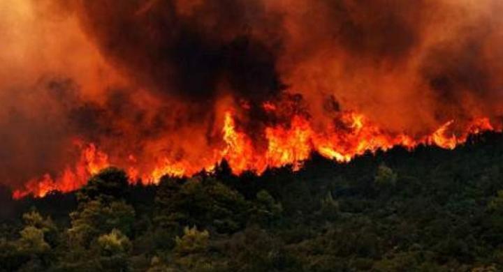 fwtia kerkura - Κέρκυρα: Φωτιά στο Νέο Φρούριο της πόλης