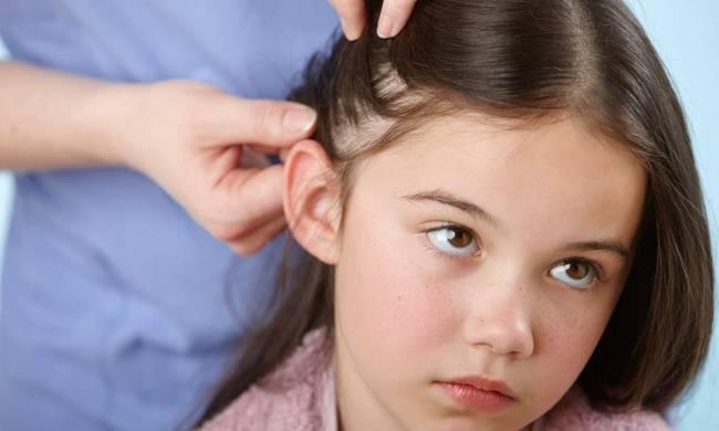 image 1 1 - Ανθεκτικές ψείρες: Μέτρα πρόληψης & αντιμετώπισης για μικρούς και μεγάλους