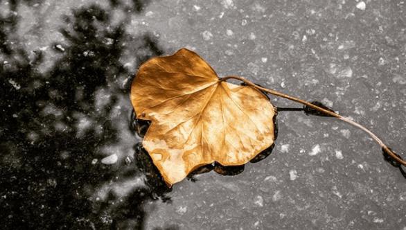 1 19 - H βροχή δίνει έμπνευση στην Λάρισα