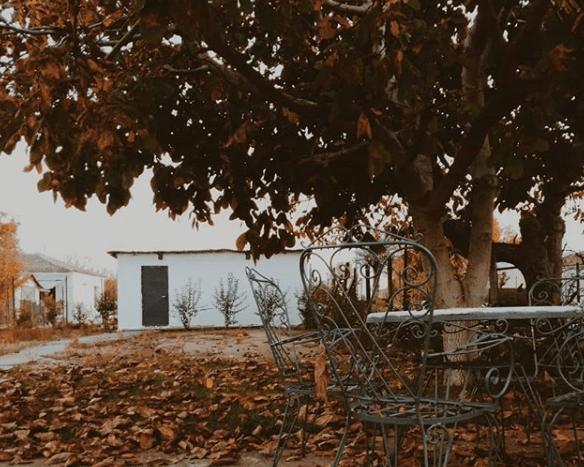 3 11 - H βροχή δίνει έμπνευση στην Λάρισα