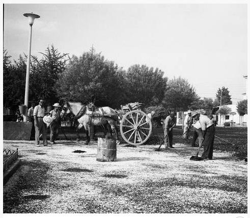 10 - Τα επαγγέλματα της Λάρισας στη δεκαετία '60 (ΦΩΤΟ)
