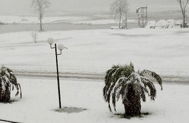 Screenshot 5 9 - Χιόνισε στο Στόμιο. Η εικόνα που αντίκρισαν οι κάτοικοι το πρωί!