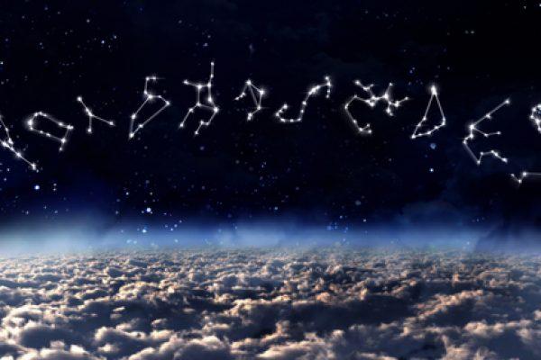 zodia 2 600x400 - Intense