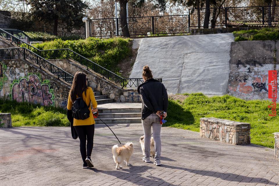 12736220 10207481467809163 86750827 n - Αυτό είναι το καλύτερο μέρος στη Λάρισα για βόλτα με τον σκύλο σου
