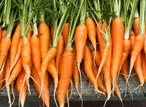 fresh organic carrots 500x366 - Οι τροφές που θα σε κρατήσουν για πάντα νέο