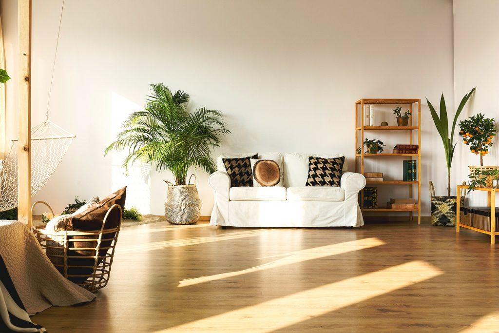 istock 800385700 yzf8 1024x683 - Αυτά τα φυτά καθαρίζουν την ατμόσφαιρα του σπιτιού σου