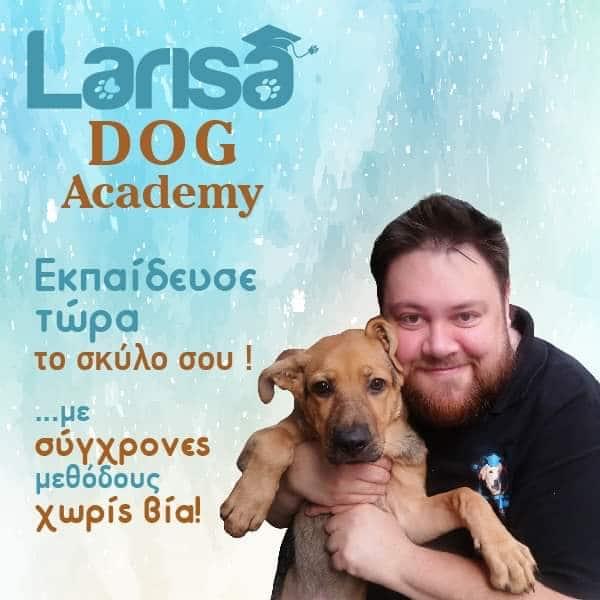 Larisa dog academy : πως να εκπαιδεύσετε τον σκύλο σας