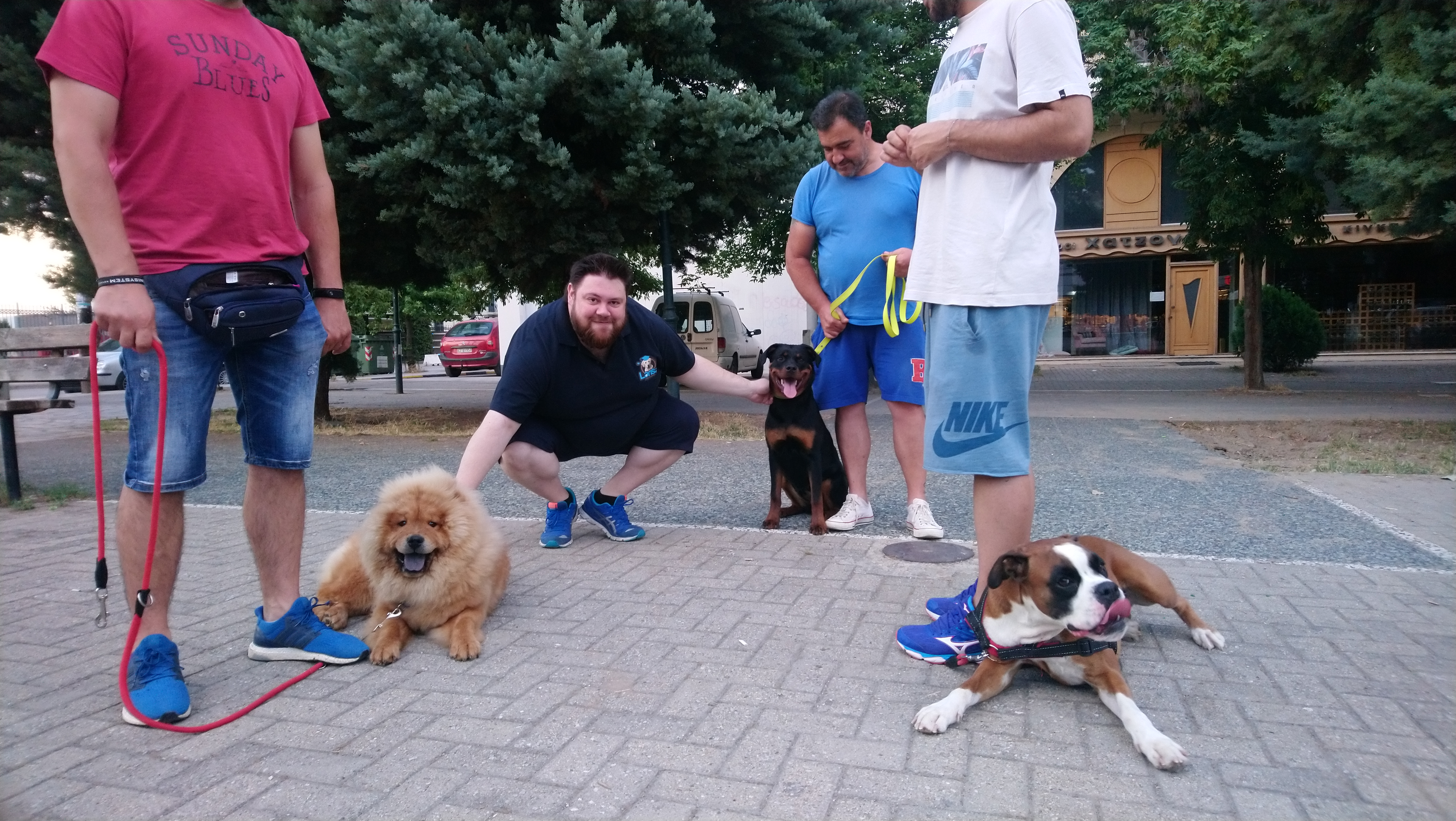 Larisa dog academy